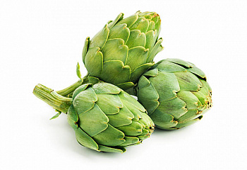 Артишок Artichoke Madrigal