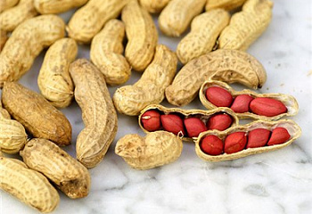 Арахис Peanuts Tennessee Red Valencia